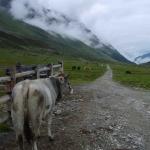 Etappe3 - Schweizer Grenze